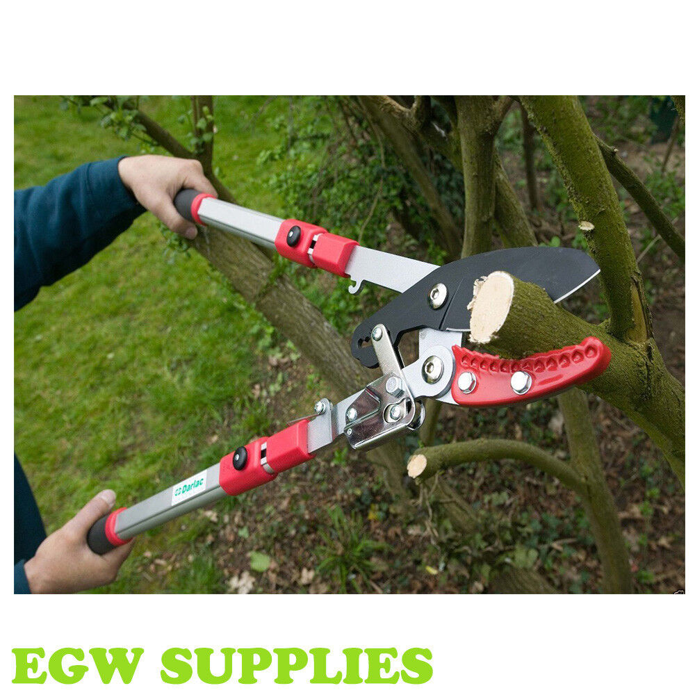 loppers for pruning UK