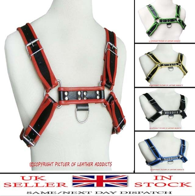 Leather H Bulldog Harness Leather Adjustable Straps In