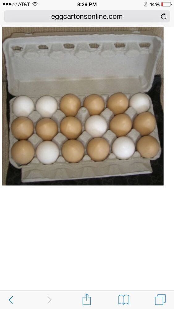 65 paper mis printed egg cartons holds 18 eggs free for How to make paper egg trays