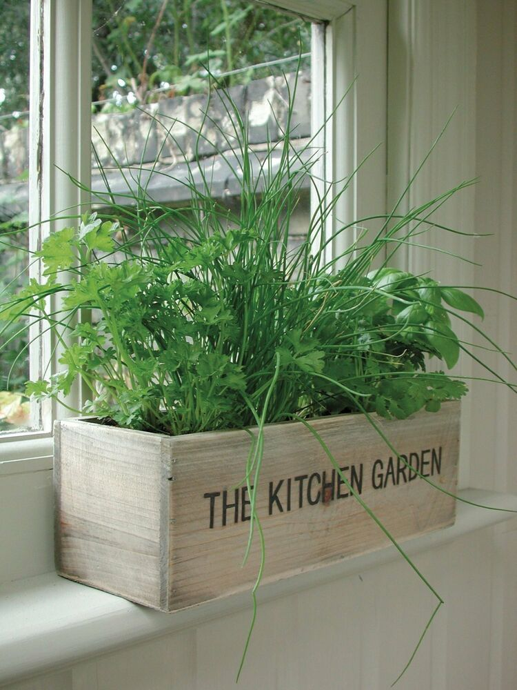 Unwins herb kitchen garden kit grow your own wooden pots for Kitchen herb garden