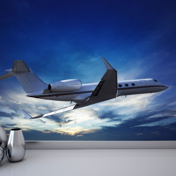Private Jet Flying Plane Aviation Photo Wallpaper Mural