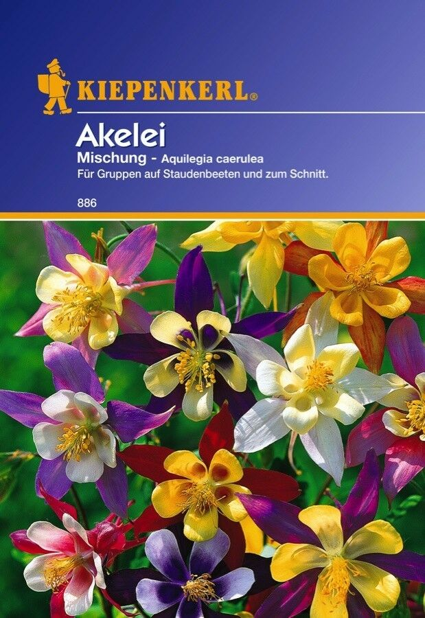 akelei aquilegia caeru mischung mehrj hrig blumen samen stauden schnittblume ebay. Black Bedroom Furniture Sets. Home Design Ideas