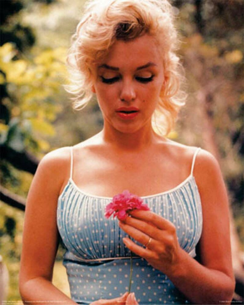 marilyn monroe flower art poster print size 24x36 ebay. Black Bedroom Furniture Sets. Home Design Ideas