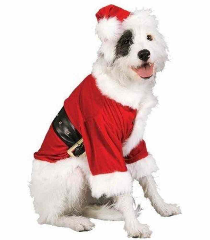 Santa claus christmas holiday fancy dress up halloween pet dog cat