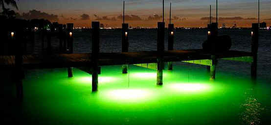 marine underwater boat dock lights night fishing accent