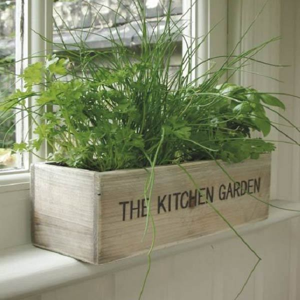 Kitchen Garden Kit: Unwins Kitchen Garden Herb Kit