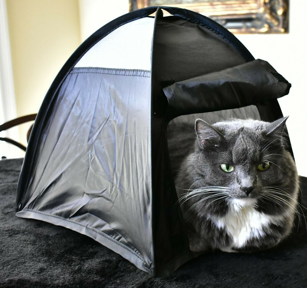Cat Or Dog Bed That Pops Up Like A Tent My Cats Go Psycho
