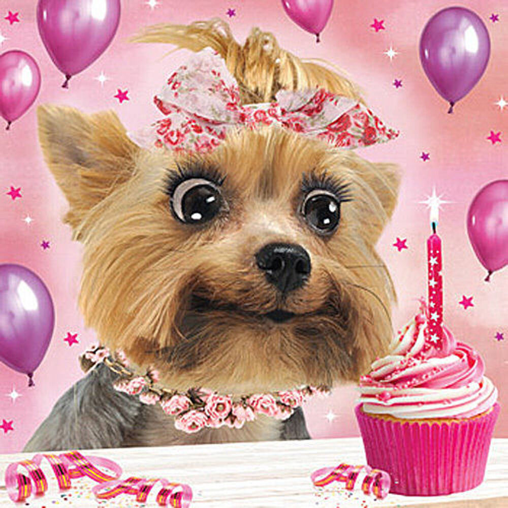 yorkie happy birthday 3d holographic birthday card yorkshire terrier dog 3515