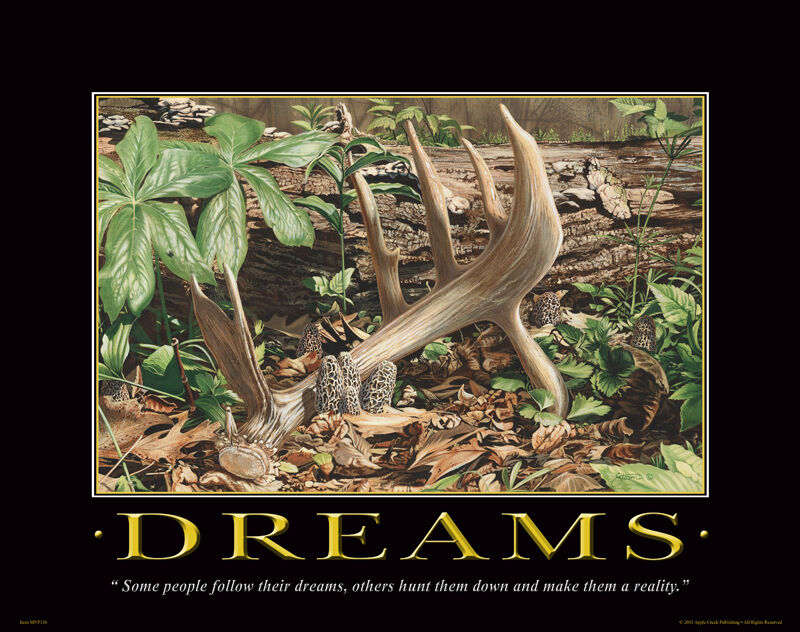 Whitetail deer motivational poster art deer antlers sheds for Buy art posters online