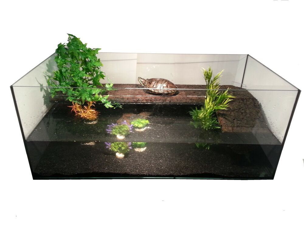 100x50x40 cm glas becken aquarium schildkr ten. Black Bedroom Furniture Sets. Home Design Ideas