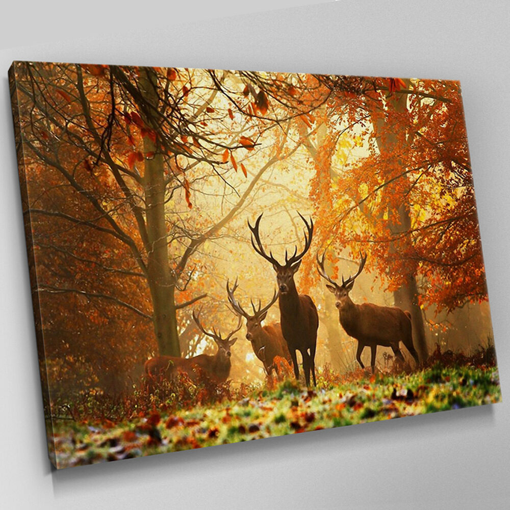 A240 Stag Herd Sunset Autumn Forest Canvas Wall Art Animal ...