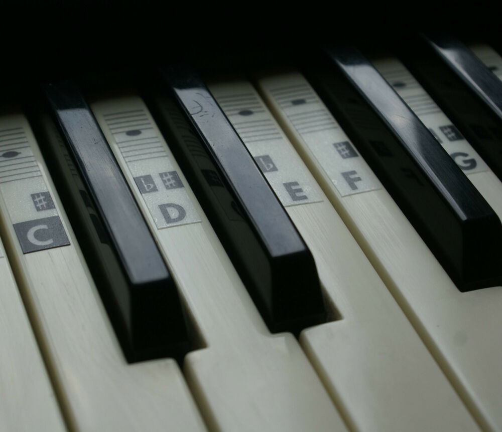 It's just a graphic of Sizzling Piano Key Stickers Printable