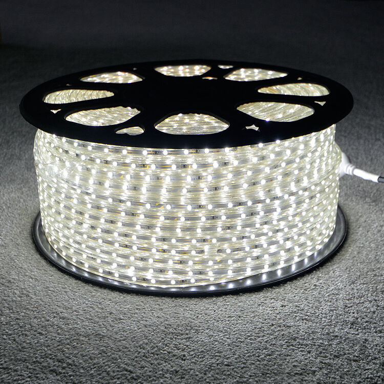 Outdoor Waterproof Solar Led Strip Light Smd 5050 5m: Cool White LED Strip 220V 240V IP68 Waterproof 3528 SMD