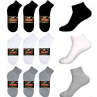 5~100 Dozens Wholesale Lots Men Solid Sports Cotton Ankle Quarter Low Cut Socks
