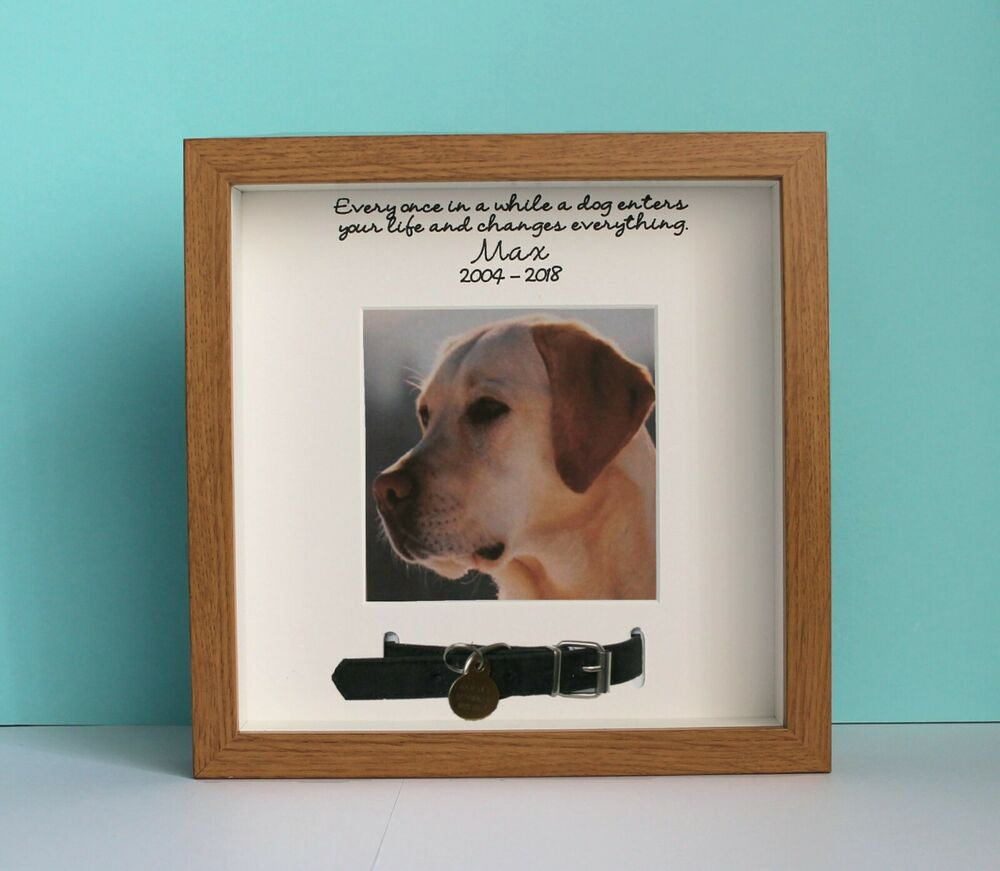 Personalised Pet Photo Picture Frame Dog Collar Memory Bereavement ...