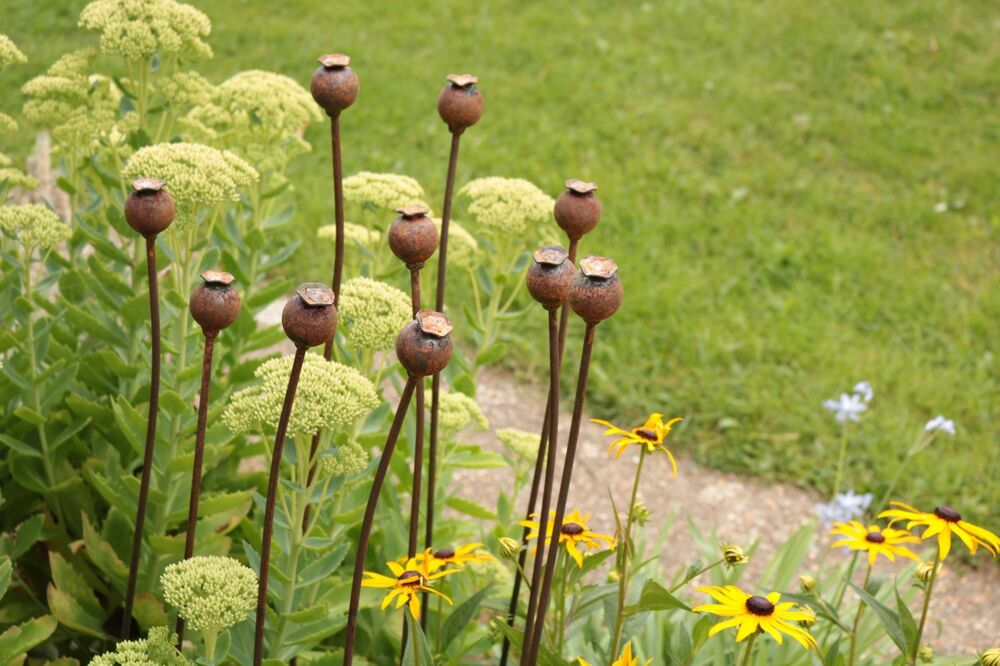 Metal poppy seed head decorative garden rusted stake plant for Decorative garden stakes