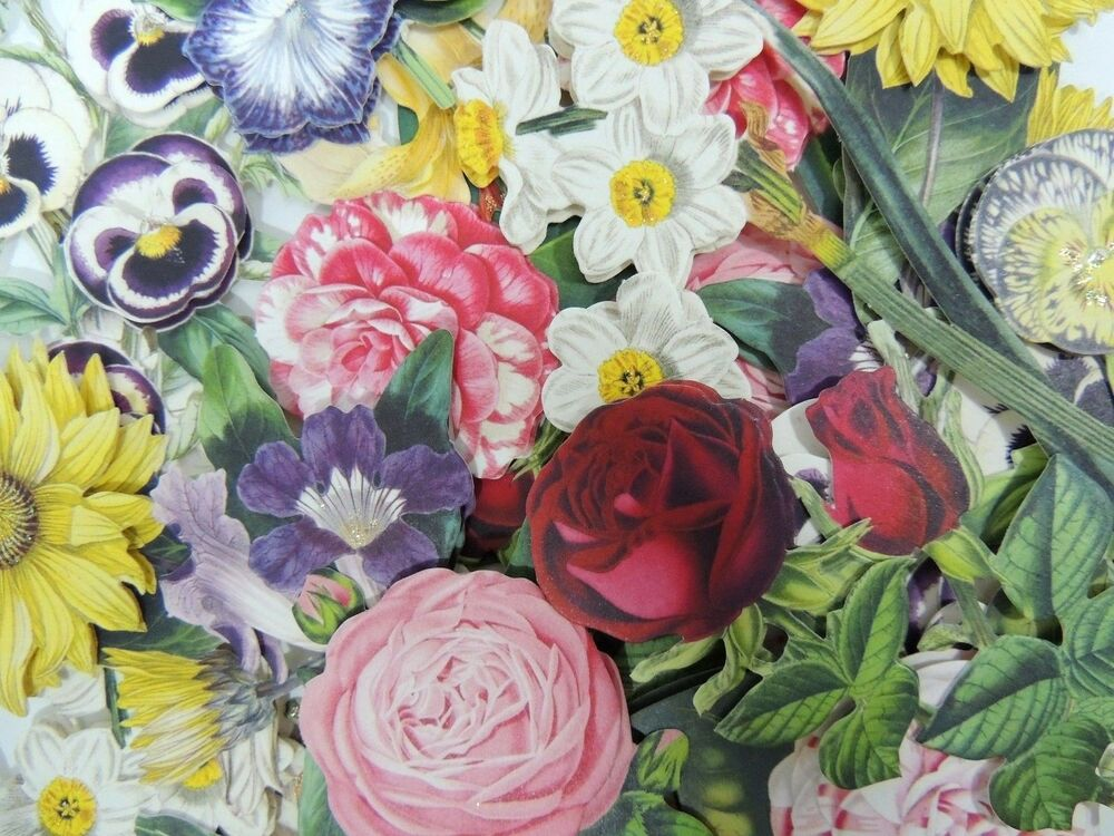 24 anna griffin small 3d decoupage flowers die cuts embellishments