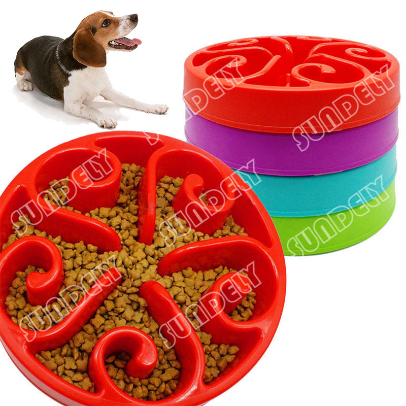 Puzzle Dog Feeder Uk
