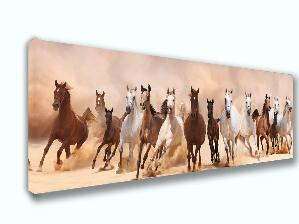 Horse mix panoramic picture canvas print home decor wall for Horse decorations for home