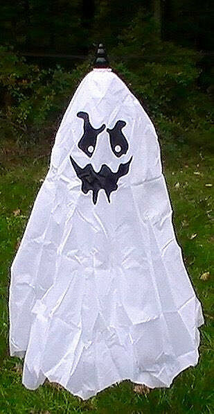 Brand new animated flying ghost halloween prop ebay for Animated floating ghost decoration