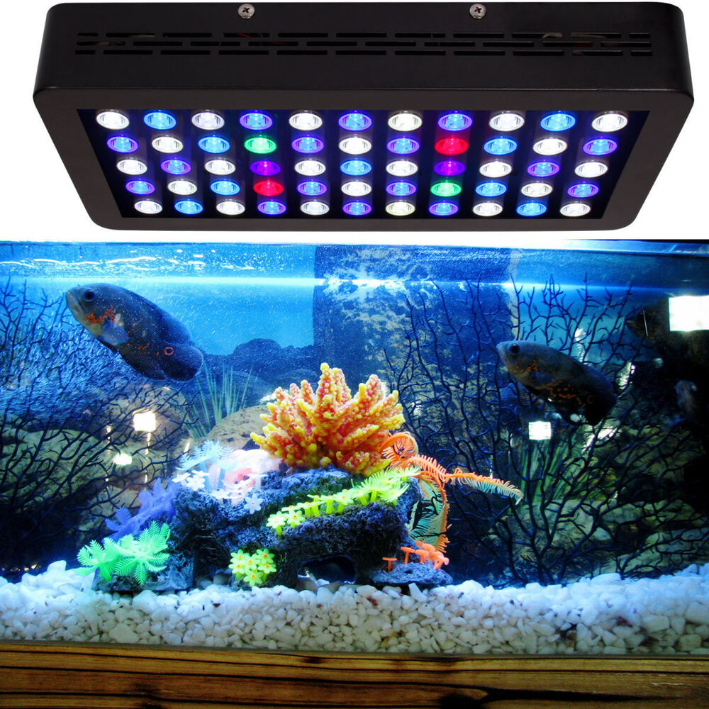 Dimmable 165w led aquarium light full spectrum for grow for Saltwater fish tank lights