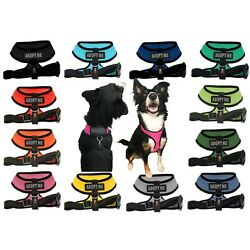 ADOPT ME Mesh Padded Soft Puppy Pet Dog Harness Breathable 12 Colors 5 Sizes