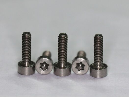 5 x titan schrauben titanium screws grade 5 din 912 m2 5 x12 mm torx ebay. Black Bedroom Furniture Sets. Home Design Ideas