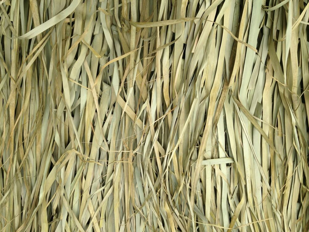 Tiki Palm Thatch Grass Bundle 5 H X 4 W 4 Sheets Per
