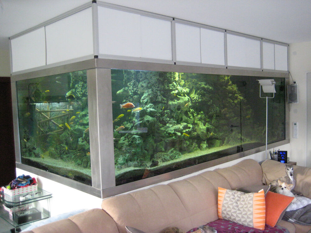 aquarium 10000 liter 4x2x1 7m np 100000 o zubeh r trocken abhol bis 31 5 ebay. Black Bedroom Furniture Sets. Home Design Ideas