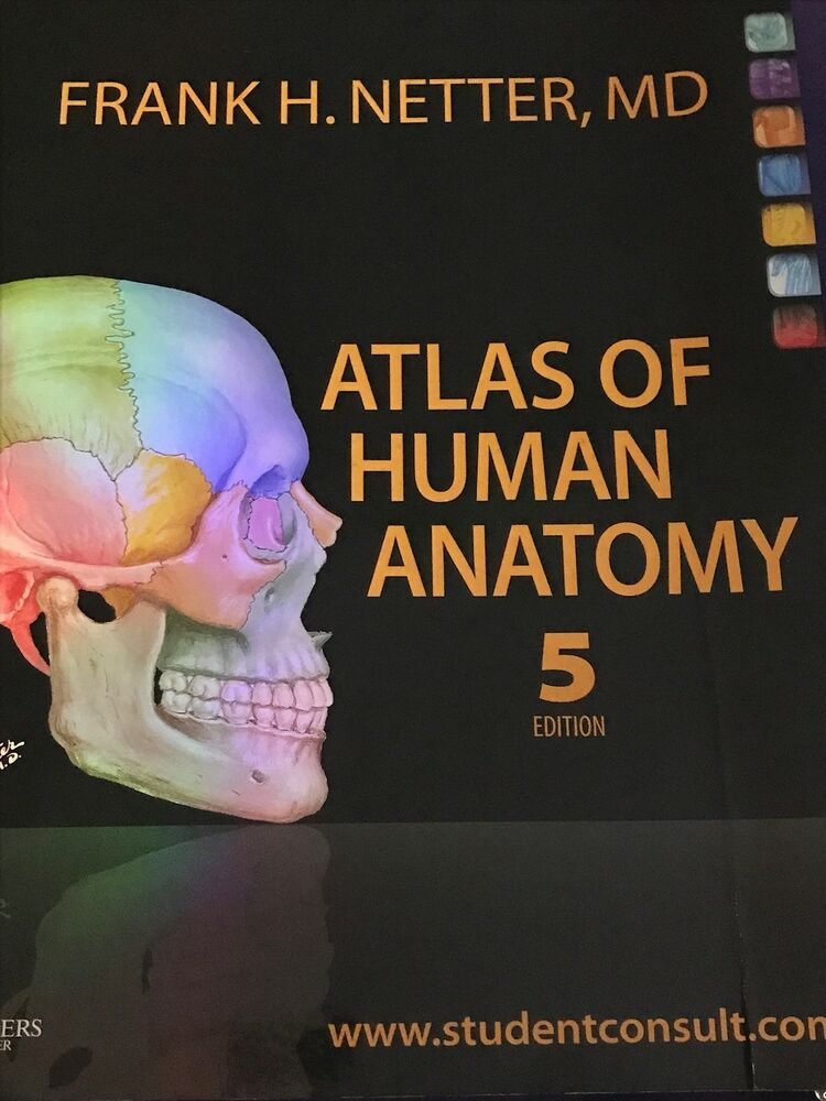 Atlas Of Human Anatomy Netter Ebay