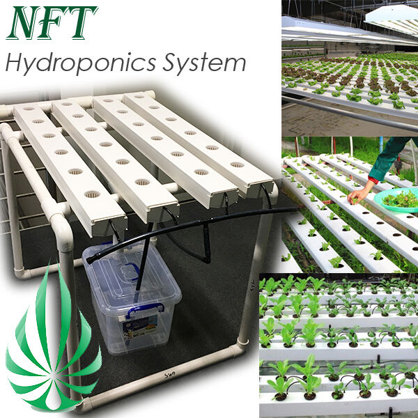24 pots hydroponic nft system back yard nutrient film technique channel grow ebay. Black Bedroom Furniture Sets. Home Design Ideas