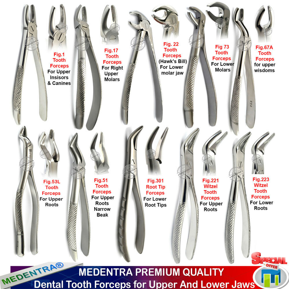 MEDENTRA® Tooth Forceps Dental Surgical Extraction Forcep for Upper ...