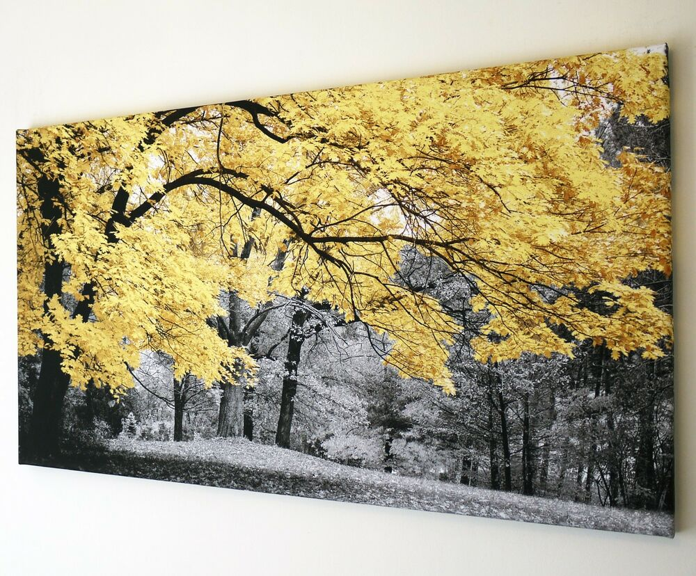 WOODLAND YELLOW TREE BLACK AND WHITE CANVAS WALL ART PICTURE 18\