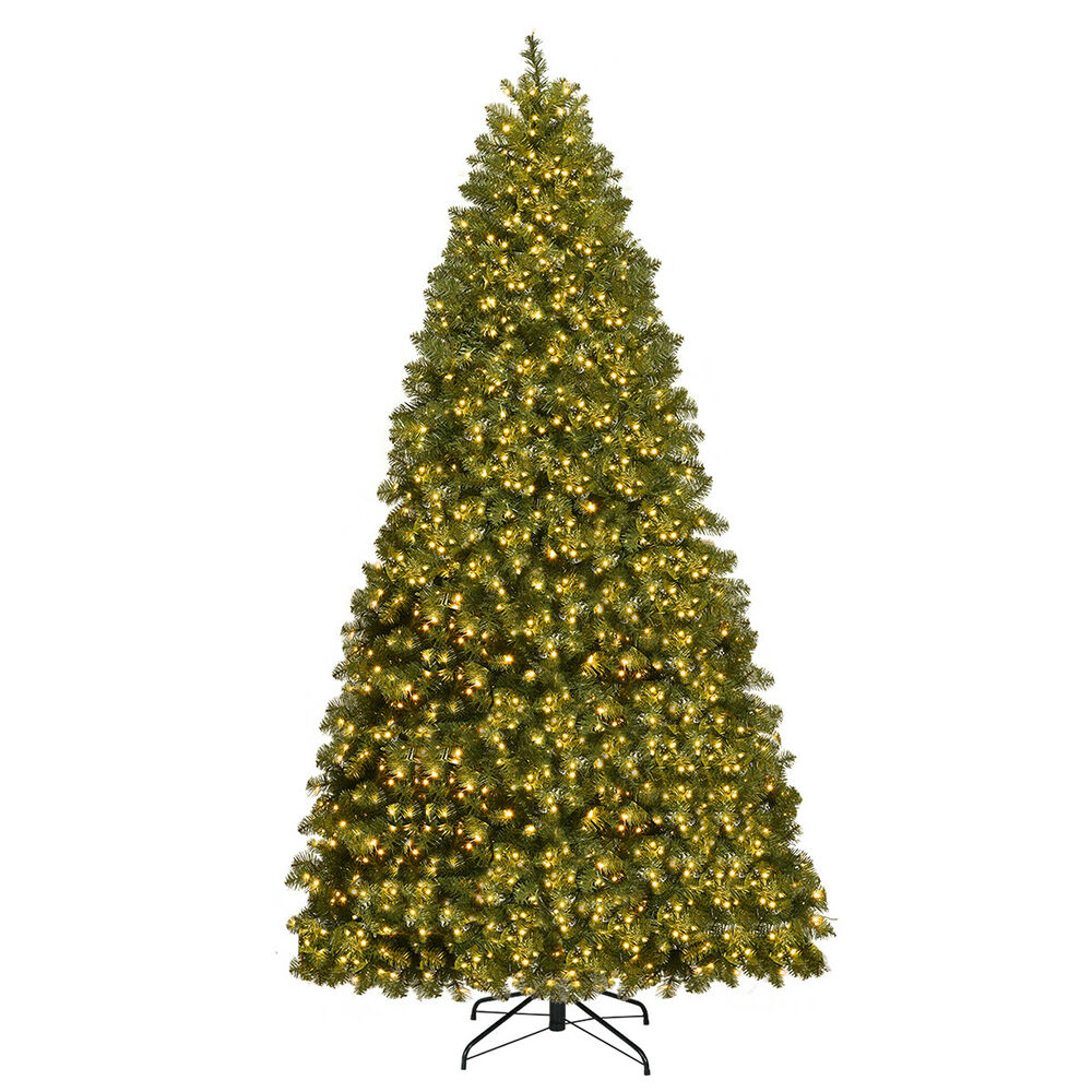 Pre Lit Led Lights Christmas Tree: 8Ft Pre-Lit Dense PVC Christmas Tree Spruce Hinged W/880