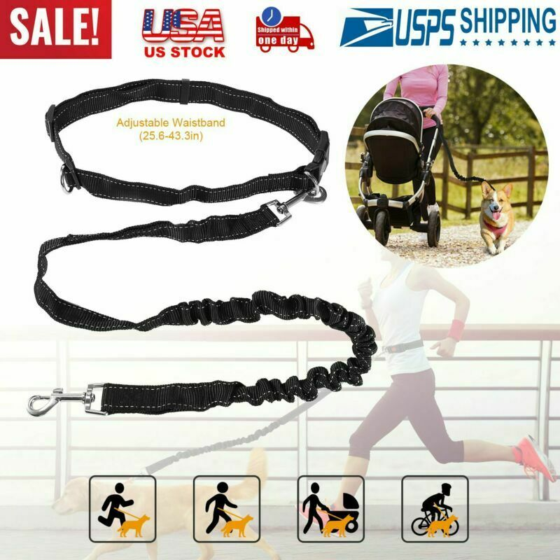 Hands Free Bicycle Dog Leash Strong Easy Tug Leashes For Small To Large Dogs