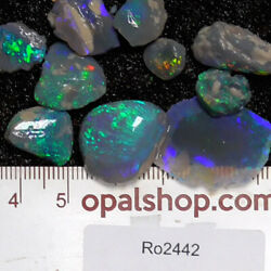 Nobby Opal from Lightning Ridge Black Opal Country, Opal Rough Parcel - Ro2442