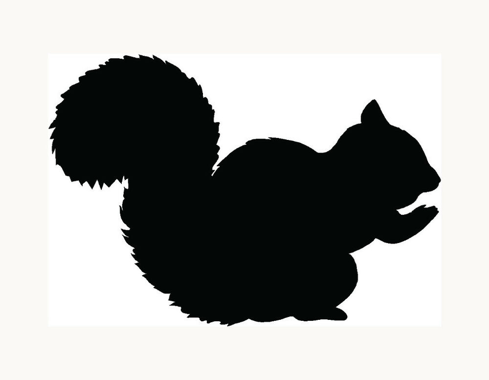 Squirrel Sticker Car Window Decal Cute Girl Love Pet