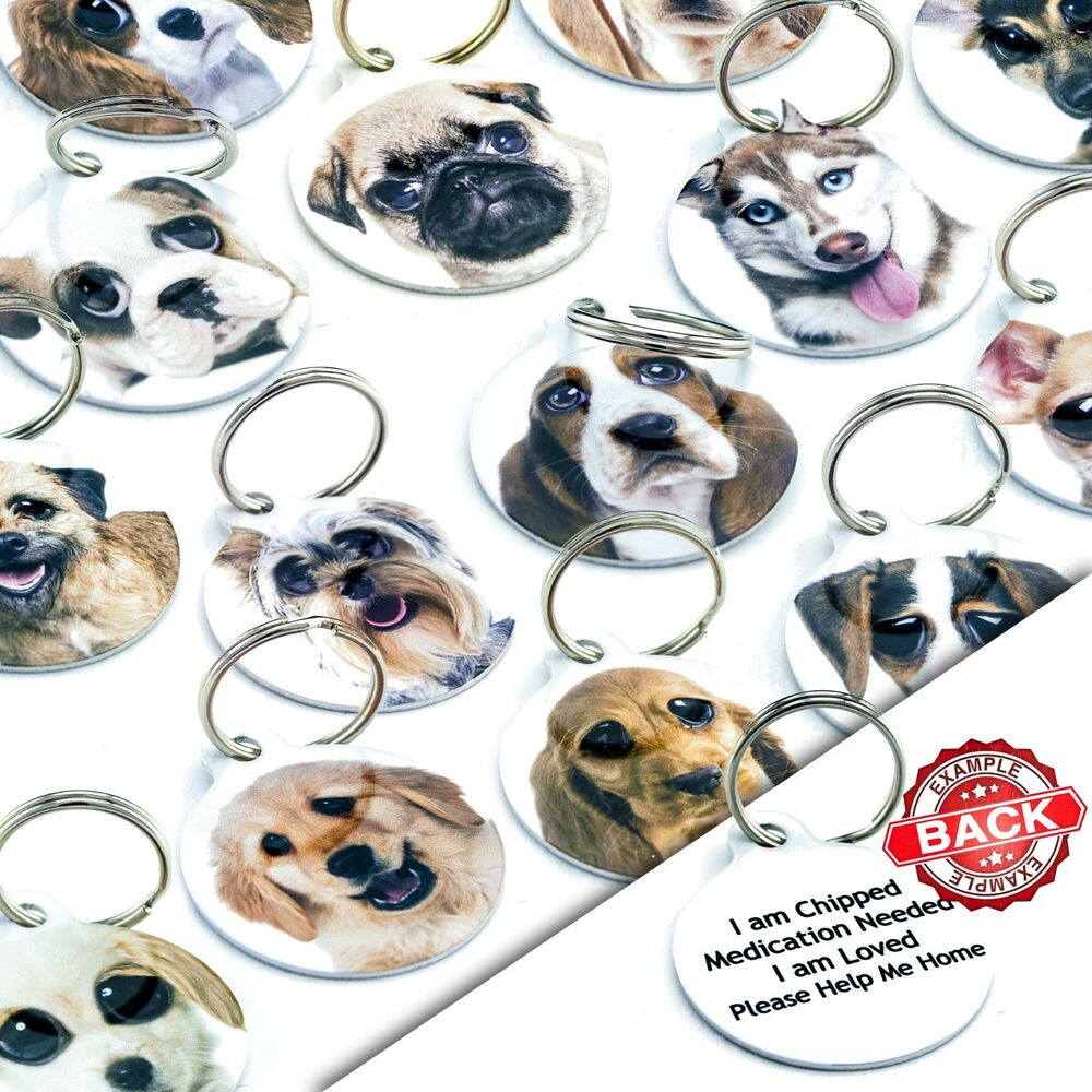 Double Sided Cool Cute Personalised Pet Dog Name Id