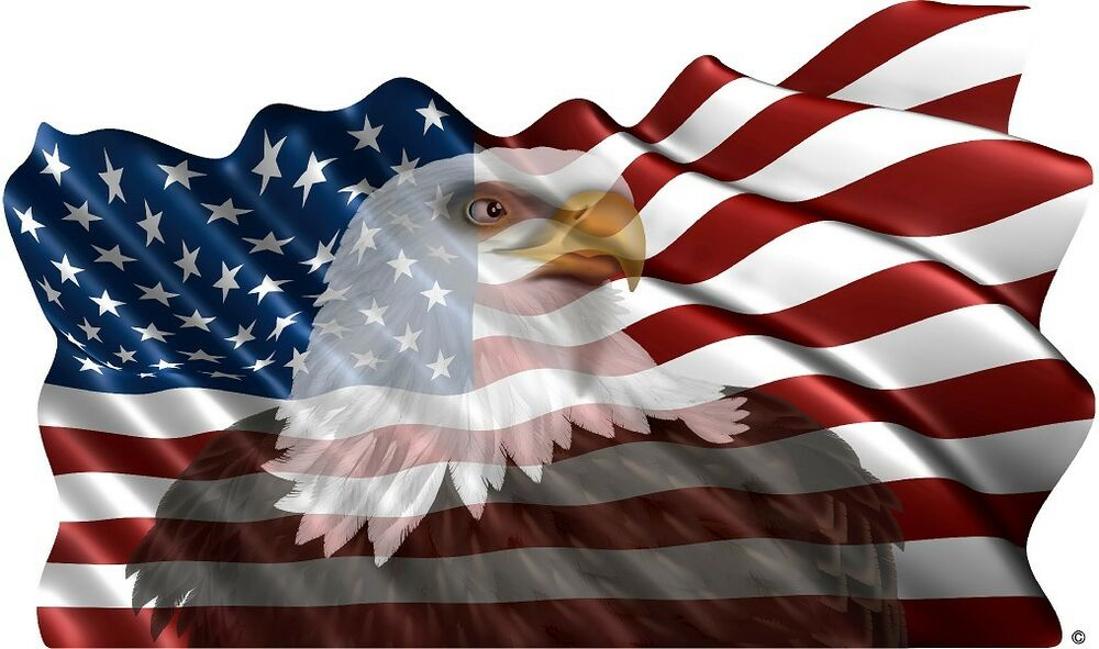 American Flag Eagle Vinyl Graphic Decal Motorhome Rv Mural