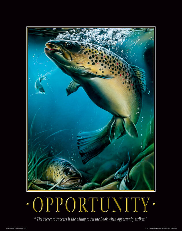 Fly fishing motivational poster st croix shakespeare fly for Fly fishing posters