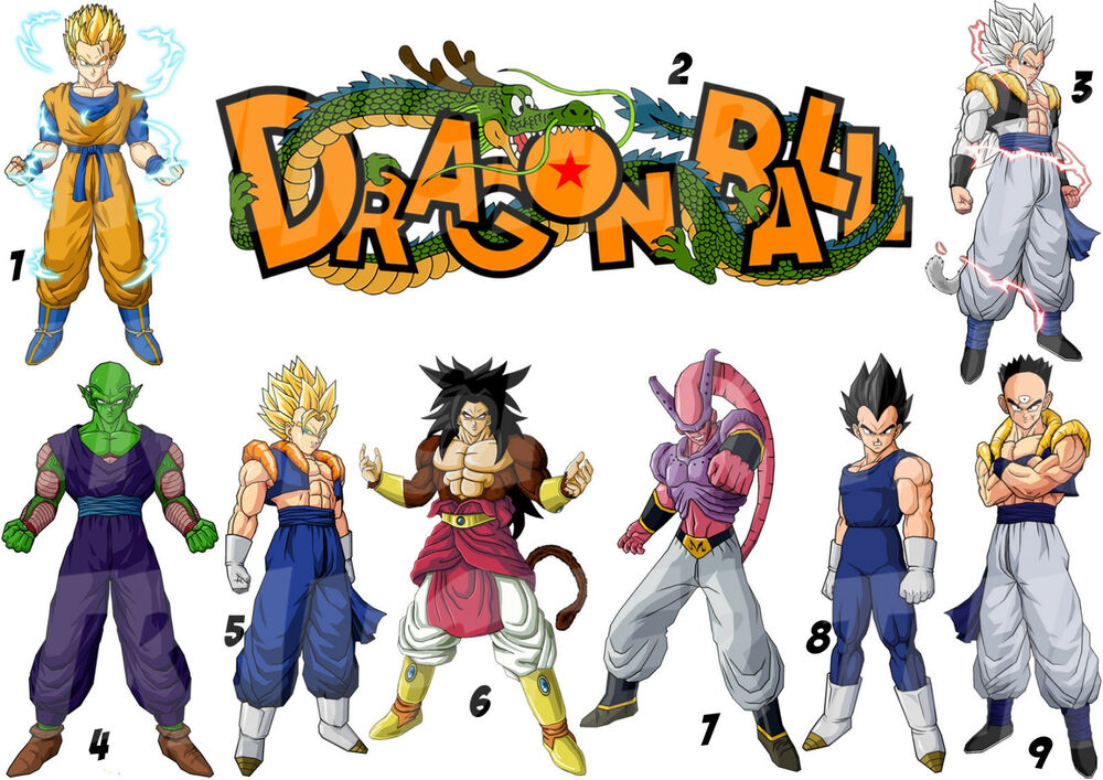 Objet Decoration Dragon Ball