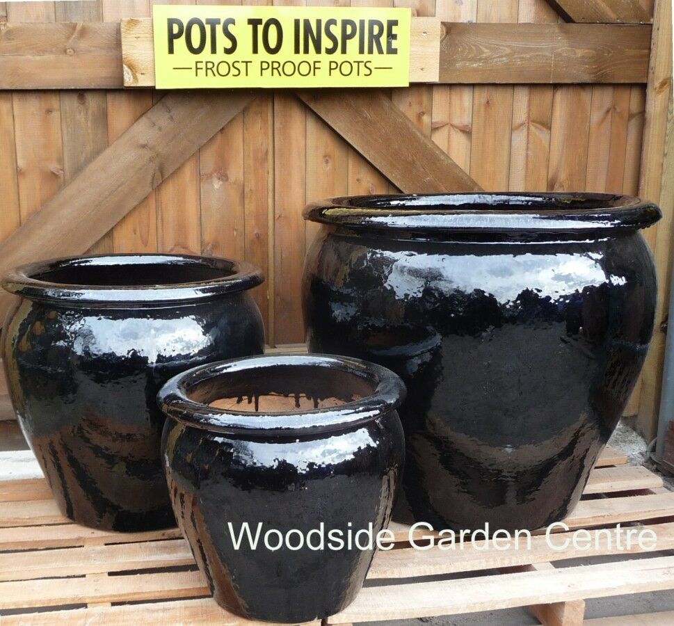 Extra large pots and large black glazed pot tree garden Extra large pots for plants