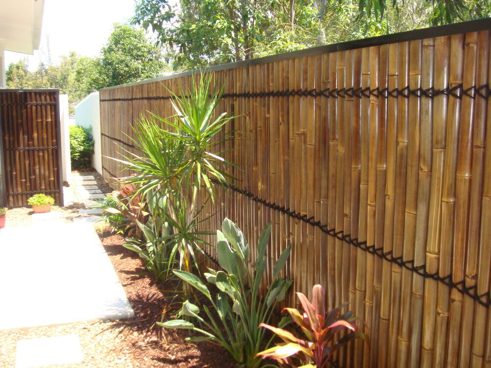 Bamboo fence panels bamboo screens bamboo privacy bamboo Bamboo screens for outdoors