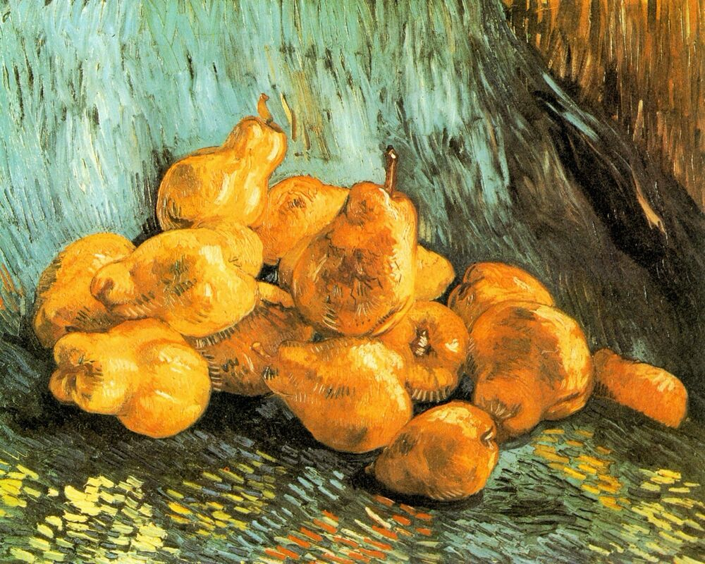 still life with quinces by vincent van gogh giclee print repro on canvas ebay. Black Bedroom Furniture Sets. Home Design Ideas