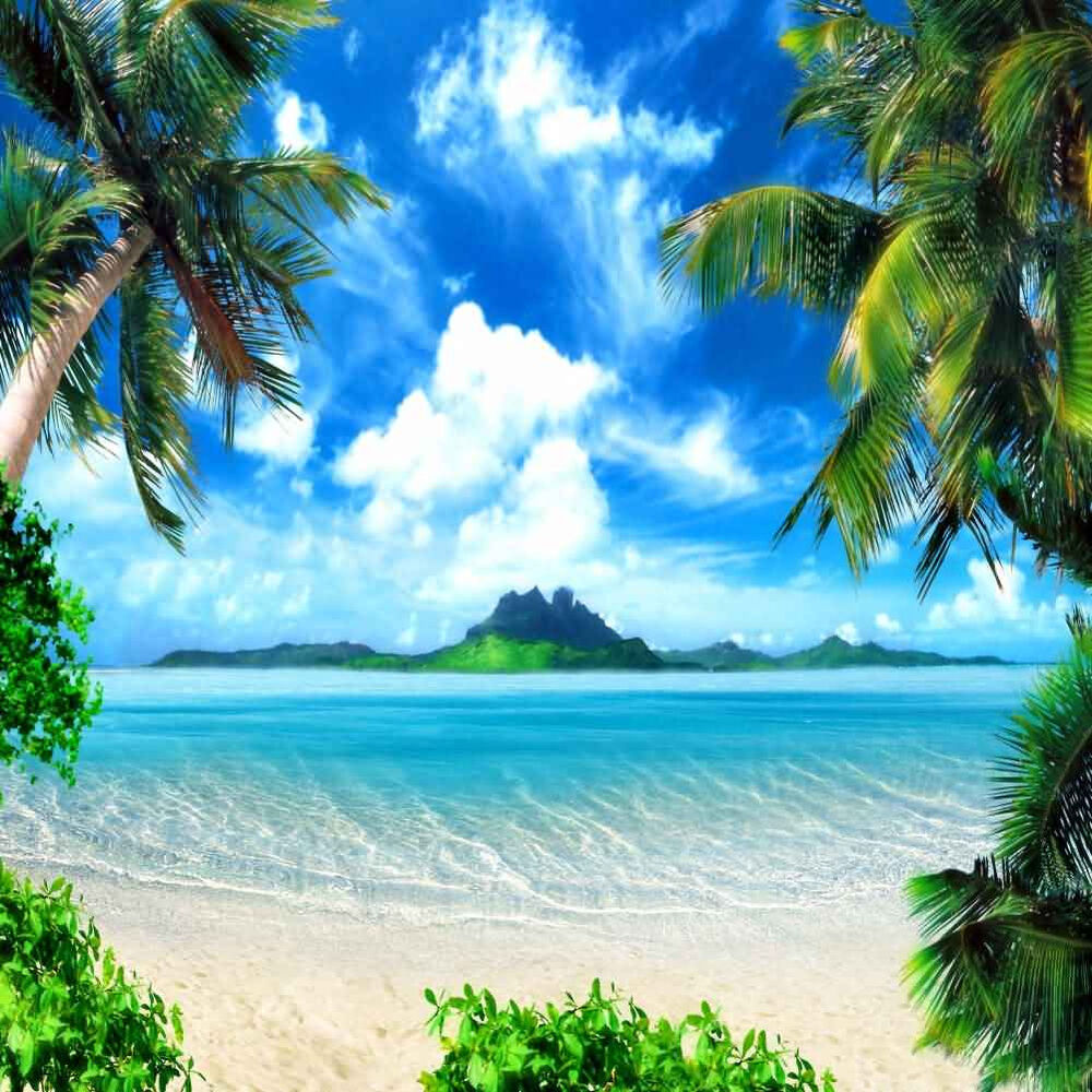 Tropical Beach 10'x10' CP Backdrop Computer Printed Scenic