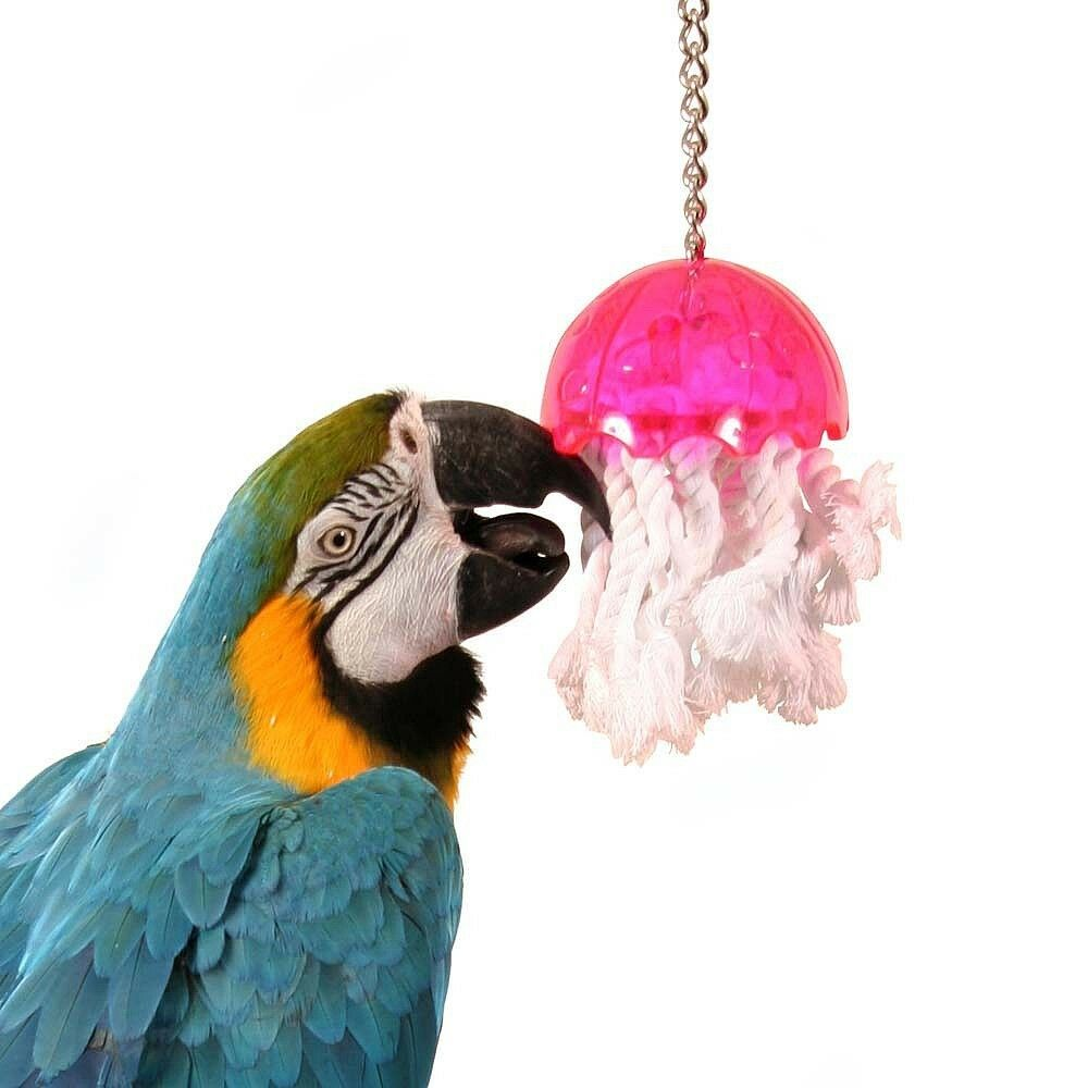 Bird Toys For Birds : Jellyfish large bird toy cage toys bulletproof