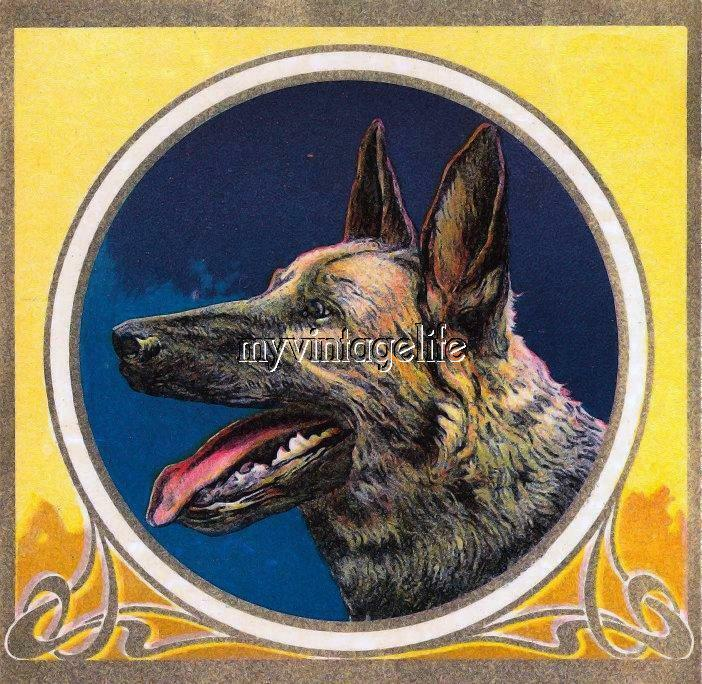 Vintage German Shepard Dog Quilting Fabric Block Ebay