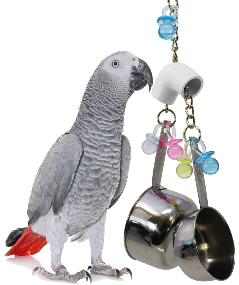 Bird Cage Toys : Big banger bird toy parrot cage toys cages cockatiel