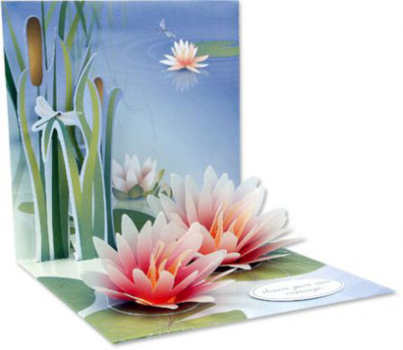 water lily popup greeting card  greeting card by up with paper, Birthday card