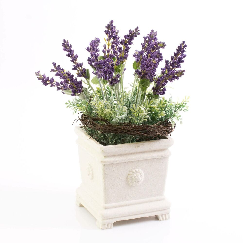 lavendel sedum arrangement im topf 30 cm kunstblume. Black Bedroom Furniture Sets. Home Design Ideas